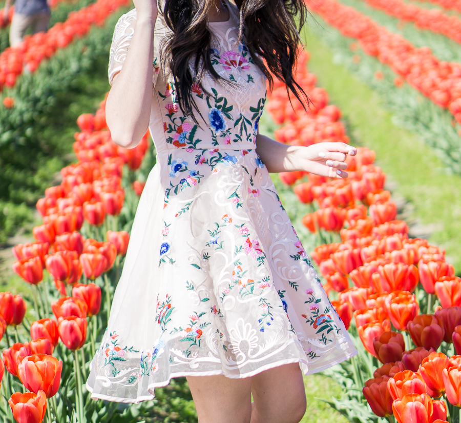 skagit tulip fields washington, floral dress chicwish garden embroidered beige organza dress, spring fashion
