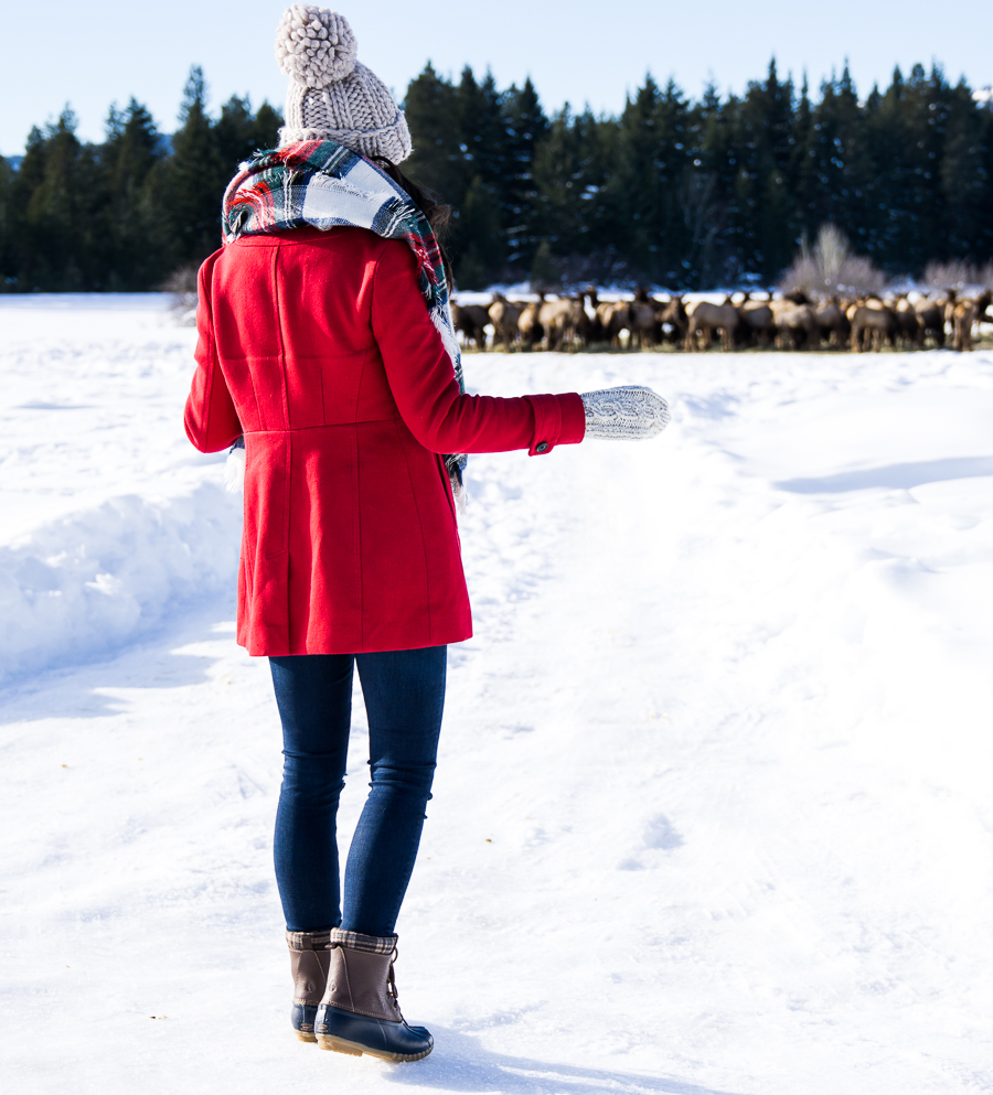 How to make duck boots look cute, plaid blanket scarf, pom pom beanie, cute winter outfit, petite fashion blog, Suncadia elk feeding