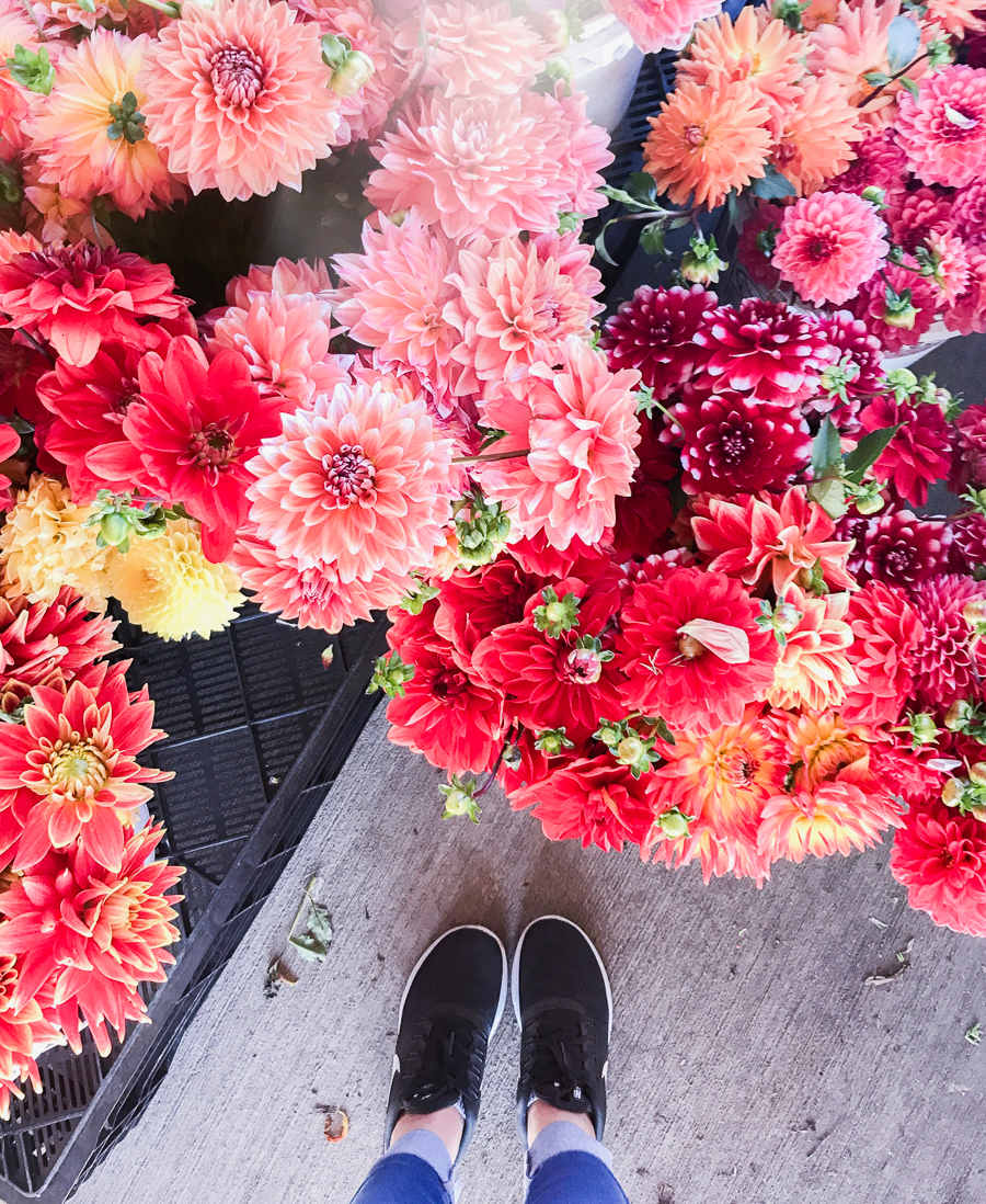 Nike Flyknit, dahlias, fall flowers, blogger lifestyle, fall feels, Seattle fashion blogger