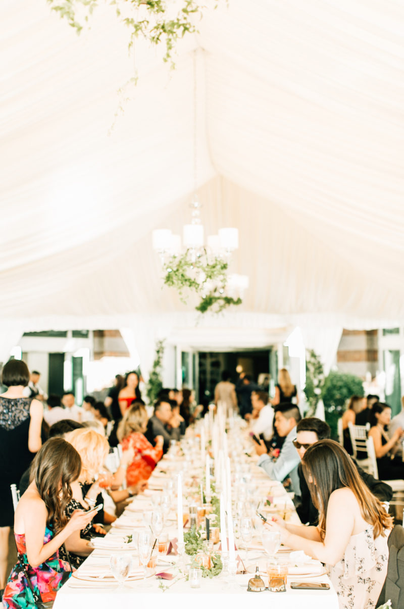 Pros & Cons of Our Top 5 Seattle Outdoor Wedding Venues ...