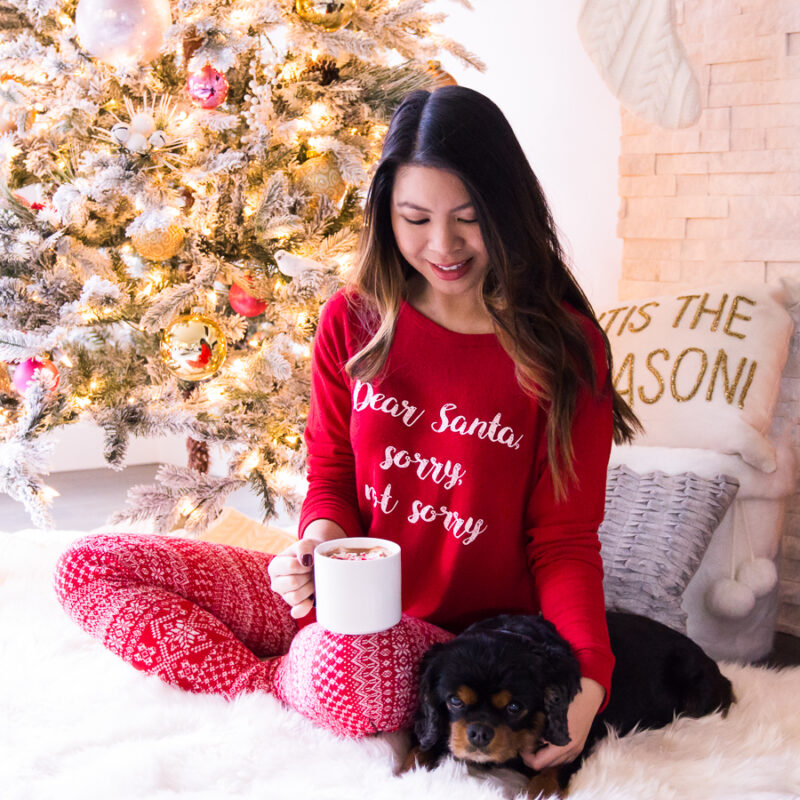 Christmas Pajamas Womens.25 Cute And Comfy Christmas Pajamas Womens Just A Tina Bit